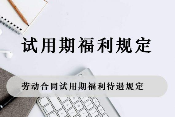 劳动合同试用期福利待遇规定